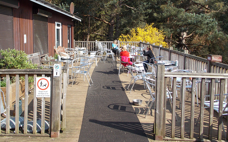 Tree Tops Cafe at Rushmere Country Park